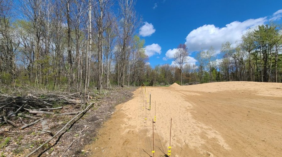 Example Conservation Actions: Protecting forested land around and between Blanding's Turtle wetlands from future development is incredibly important. Log landings can be converted into nesting habitat, and adding sand can be very helpful, but nest site creation should only be done in coordination with state wildlife agencies. Timber harvests in Blanding's Turtle habitat should take place during winter, and ATV trails that pass near their wetlands or through nest sites should be closed, re-routed, or used only from late fall through early spring. At roadkill hotspots, wildlife underpasses or turtle and fish-friendly culverts can be installed. 📷 Kiley Briggs